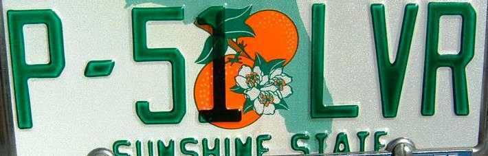 P-51 LVR License Plate cropped